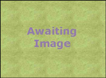Photo of 7.5cm Pak 40/2 Gw II(D,E)